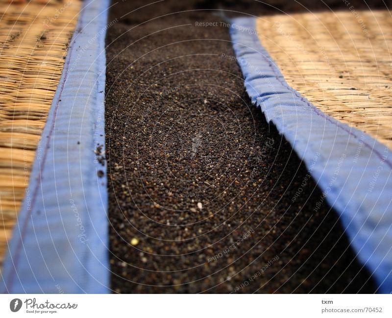 black sand on the beach... Beach Sandy beach Straw mat Beach mat Towel Ocean teneriffa north volcanic rock