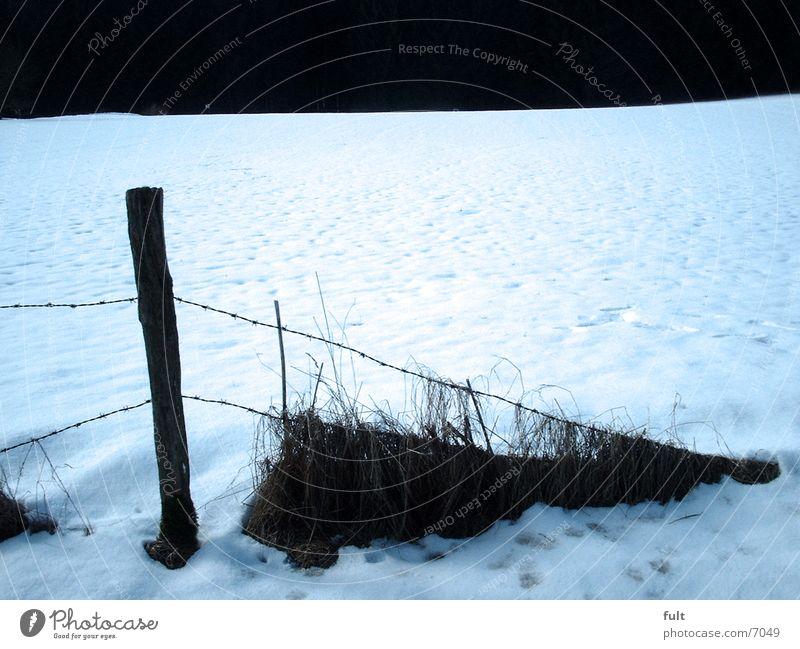 Winter Snow Wood Fence