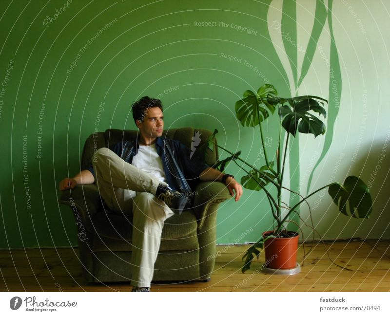 Human being Green Plant Relaxation Wall (building) Wait Chair Cloth Moving (to change residence) Parquet floor