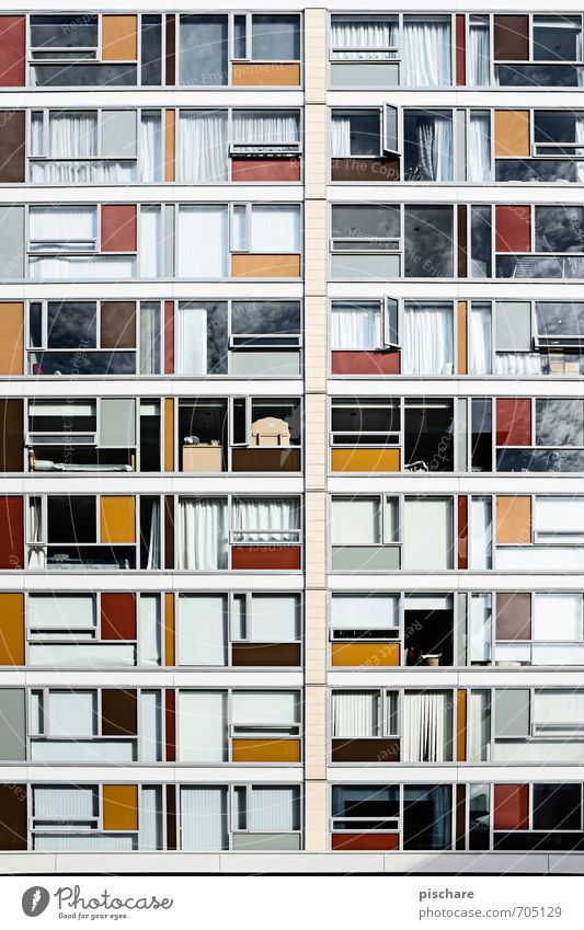 patchwork carpet Town House (Residential Structure) Architecture Facade Window Multicoloured Living or residing Wellington New Zealand Colour photo