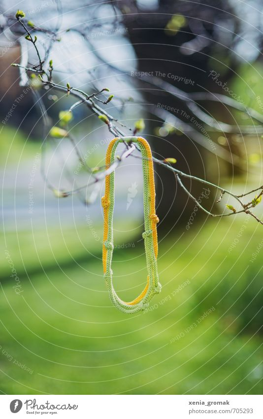 Green Spring Playing Fashion Leisure and hobbies Lifestyle Esthetic Happiness Beautiful weather To enjoy Rope Branch Adventure Jewellery Necklace Accessory
