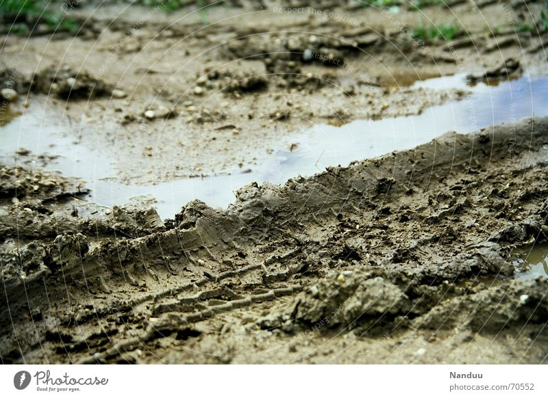 Summer Rain Brown Dirty Wet Earth Munich Tracks Damp Puddle Mud Bad weather Imprint Skid marks Manure