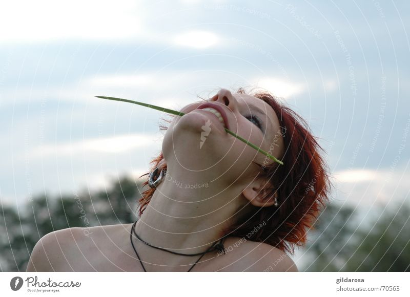 bride of the wind Blade of grass Clouds Red-haired Tree Woman Corner of the mouth Grass Fresh Sky Nature Freedom white skin Landscape Eyes Mouth Nose gag Happy