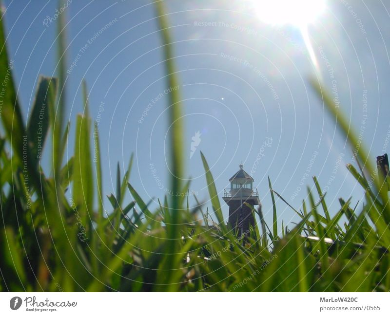 down under Grass Aperture Lighthouse Worm's-eye view Lawn Sky Sun Blue