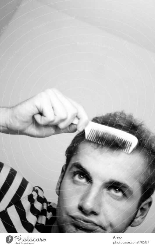 Beautiful Style Hair and hairstyles Circle Bathroom T-shirt Stripe Mirror Boredom Lust Enthusiasm Embellish Styling Brush Comb Hairdressing