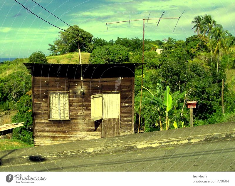 house on a slope House (Residential Structure) Slope Hill Virgin forest Tobago Electricity Broken Shack Roof Window Asphalt Green Brown Wood Iron Brick Ocean