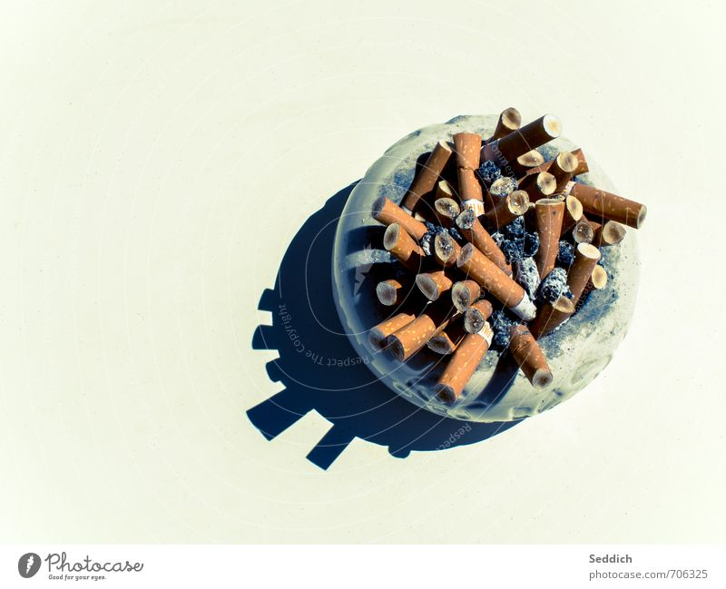 Death Healthy Art Health care Dirty Smoking Illness Cigarette Disgust Vice Ashtray Cigarette Butt