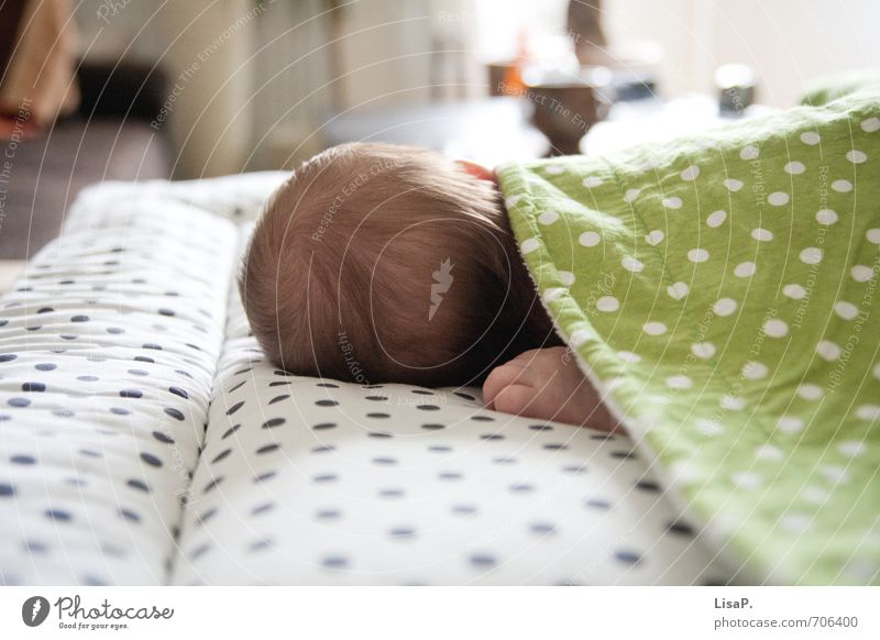 Human being Child Green White Hand Life Spring Happy Natural Head Contentment Baby Fingers Warm-heartedness Sleep Safety