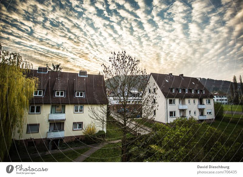 morning idyll Sky Clouds Horizon Spring Summer Beautiful weather Plant Village Town Outskirts Populated House (Residential Structure) Detached house