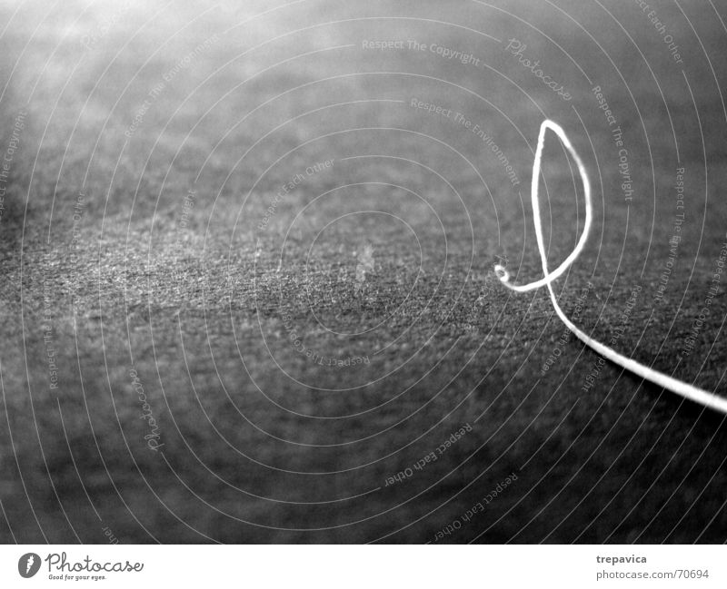 small line Gray Paper Stripe Curl Snail Caresses Slowly Thin Loneliness white line Black & white photo abstract Contrast crooked line Irritation