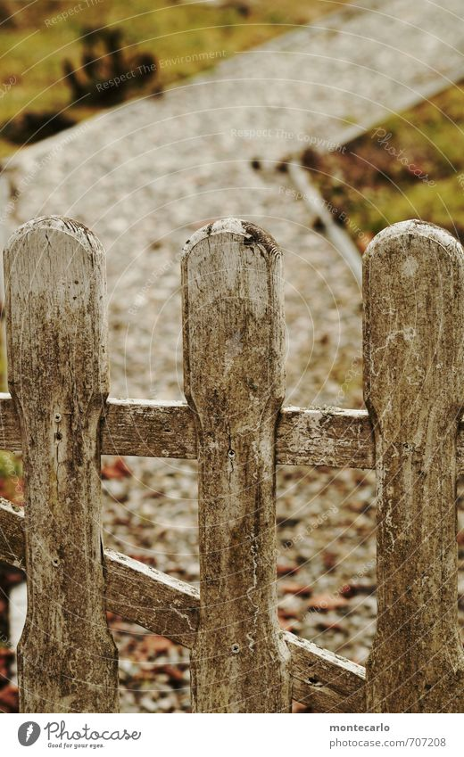 Gate to the weekend Environment Nature Earth Spring Beautiful weather Grass Moss Garden Garden door Lanes & trails Stone Wood Old Authentic Dirty Simple