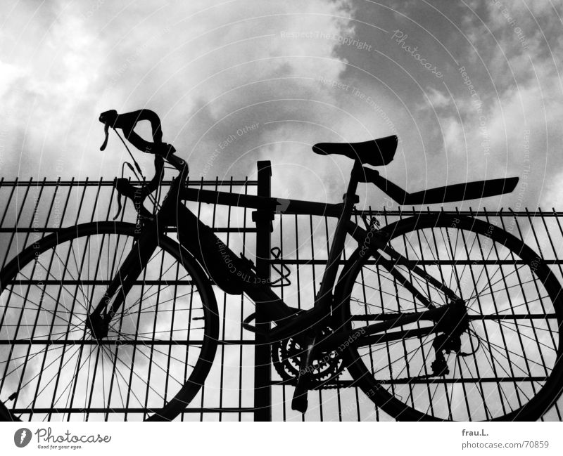 bicycle thieves Safety (feeling of) Thief Purloin Associated Racing cycle Bicycle Parking Fence Rescue Clouds Theft Things Transport appended bicycle lock Sky