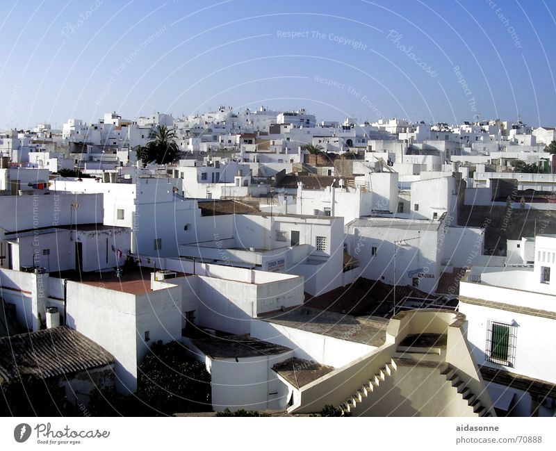 roof terraces Cadiz House (Residential Structure) Roof Roof terrace Town Spain Physics Summer White Facade Window Warmth typical for the country Stairs Sky Blue