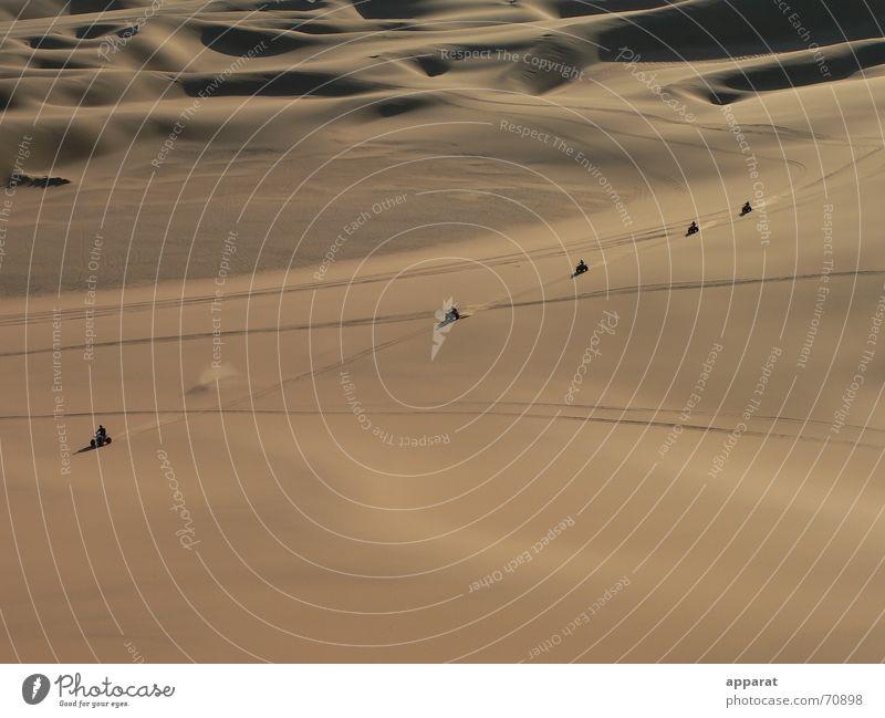 Freedom Sand Desert Beach dune Chain Namibia