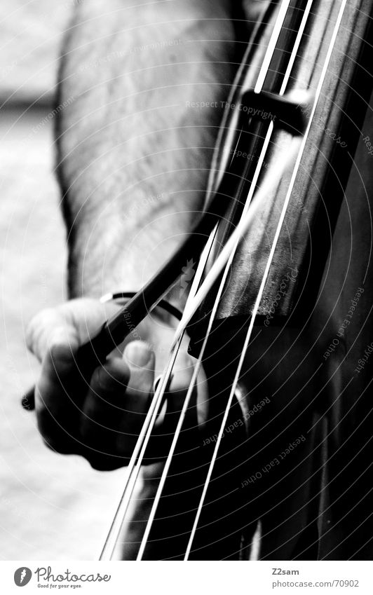 strings jump Musical instrument string Man Hand Cello Playing Fingers Double bass Arch play Black & white photo street munich