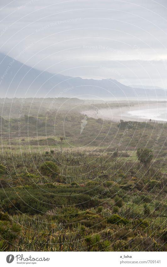 Ain't no Sunshine II Environment Nature Landscape Plant Elements Air Water Sky Clouds Autumn Climate Bad weather Fog Rain Bushes Wild plant Alps Mountain Waves