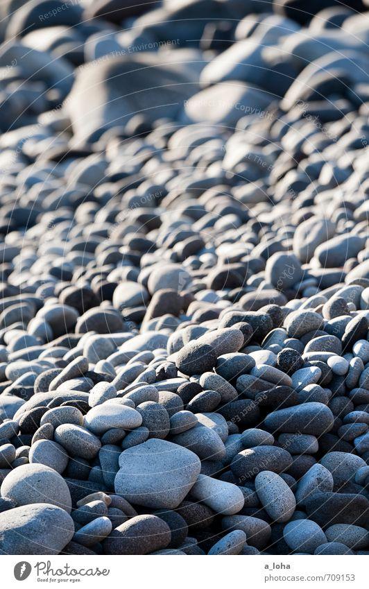 Stones. Beach. Nature Landscape Elements Coast Gray Stress Uniqueness Arrangement Stagnating Attachment New Zealand North Island Cape Egmont Colour photo