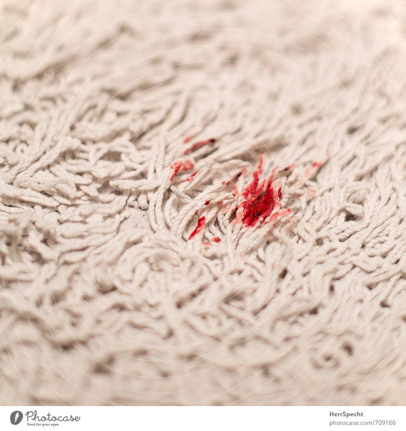 Blood stain, carpet. Personal hygiene Healthy Flat (apartment) Bathroom Dirty Disgust Fresh Red White Shame Rug Patch Wound Menstruation Contrast Dripping