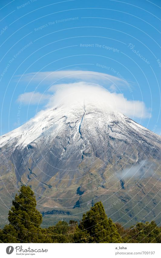 wanderlust Environment Nature Landscape Plant Elements Air Sky Clouds Autumn Beautiful weather Ice Frost Tree Grass Mountain Peak Snowcapped peak Volcano