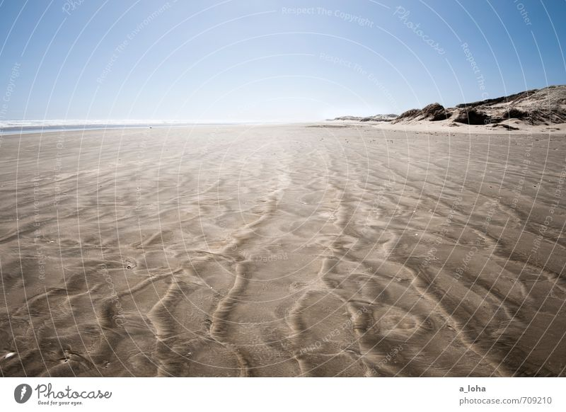 daydreams Environment Nature Elements Sand Air Water Cloudless sky Horizon Summer Climate Beautiful weather Waves Coast Beach Ocean Simple Blue Brown Wanderlust