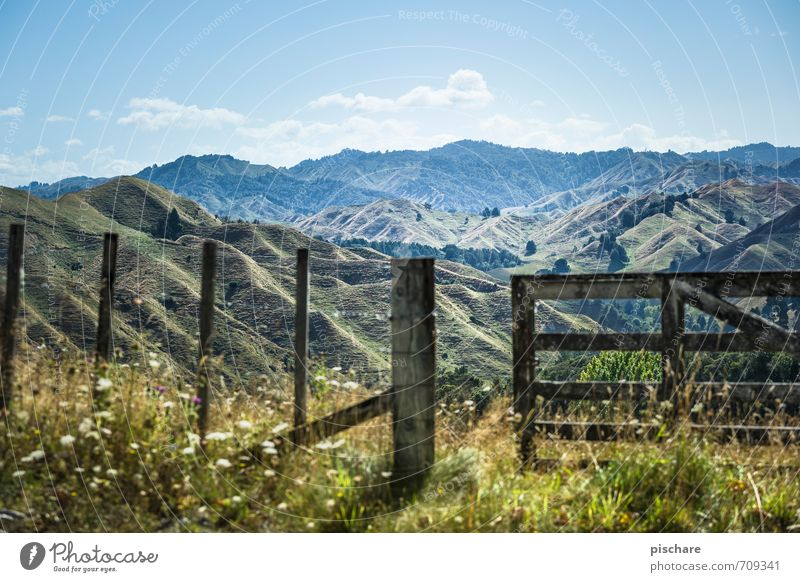 Third mountain right Nature Landscape Beautiful weather Grass Hill Mountain Adventure Vacation & Travel Fence New Zealand Colour photo Exterior shot Day