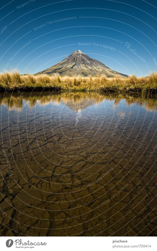 The lonely volcano Nature Landscape Earth Water Cloudless sky Beautiful weather Bushes Peak Volcano Pond Esthetic Exotic Gigantic Adventure New Zealand taranaki