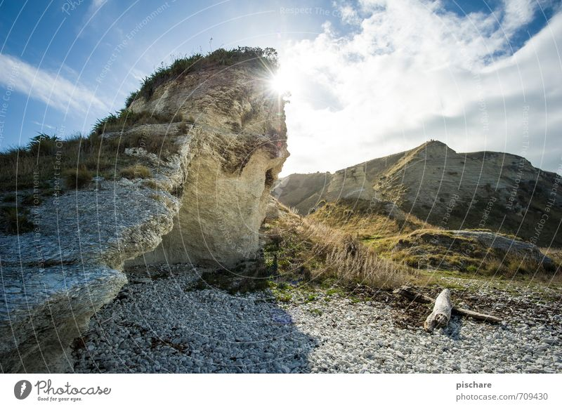 sun Nature Landscape Sun Sunlight Beautiful weather Rock Coast Natural kaikoura New Zealand Colour photo Exterior shot Day Light Back-light Deep depth of field