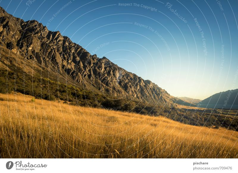 Remarkables / Day Nature Landscape Cloudless sky Sunrise Sunset Beautiful weather Meadow Mountain Exceptional Adventure Vacation & Travel New Zealand