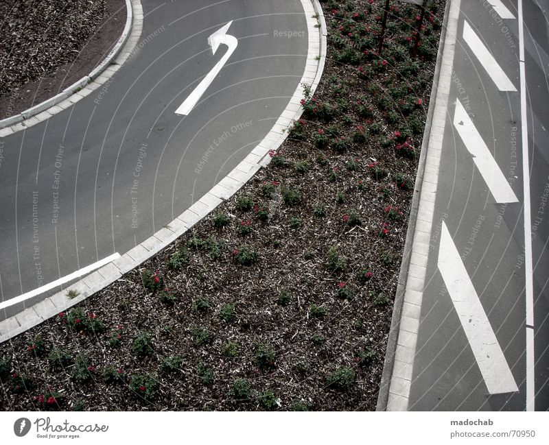 TUNE IN...| street arrows traffic marking pattern abstract Asphalt Turn off Transport Left Town Flower Nature Gray Under Pedestrian Gloomy Pattern