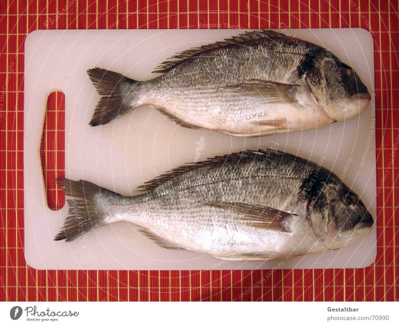 Except! Delicious Dorade Fresh Kitchen Cooking Nutrition Barn Wooden board except descaled Fish