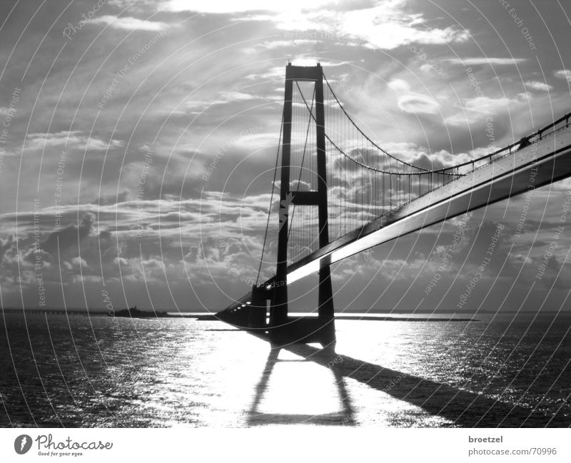 Storebaelt Ocean Water Sky Clouds Baltic Sea Bridge Architecture Driving Suspension bridge Great Belt Black & white photo Back-light