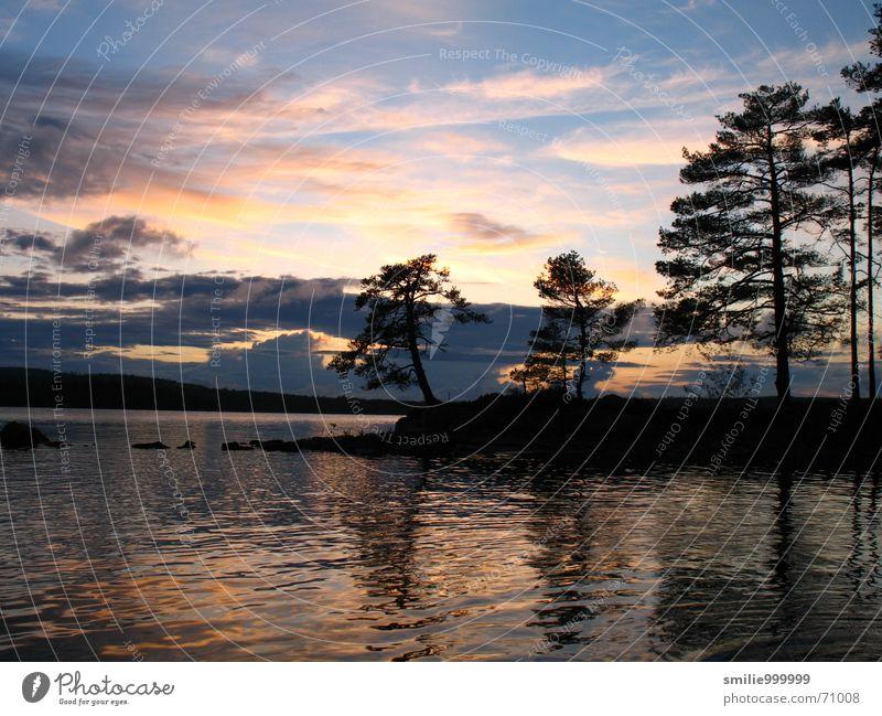 Water Tree Clouds Sunset Lake Romance Sweden