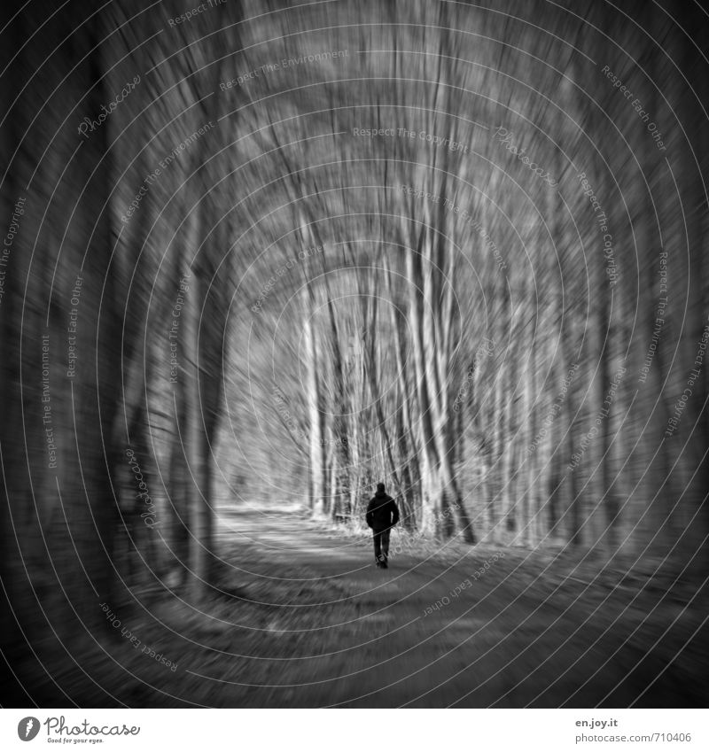 Human being Man Loneliness Dark Forest Adults Sadness Emotions Lanes & trails Death Moody Dream Fear Threat Grief Illness