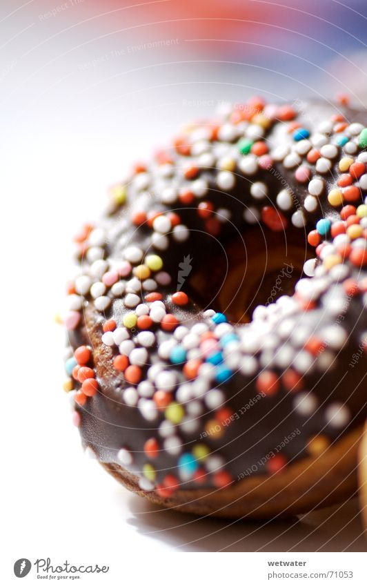 Small Food Nutrition Sweet Round To enjoy Delicious Chocolate Sugar Baked goods Dessert Donut Calorie Love pearl Chocolate cake