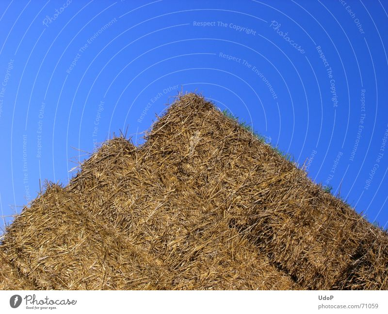 Sky Blue Yellow Gold Crazy Agriculture Straw Sharp-edged Pyramid