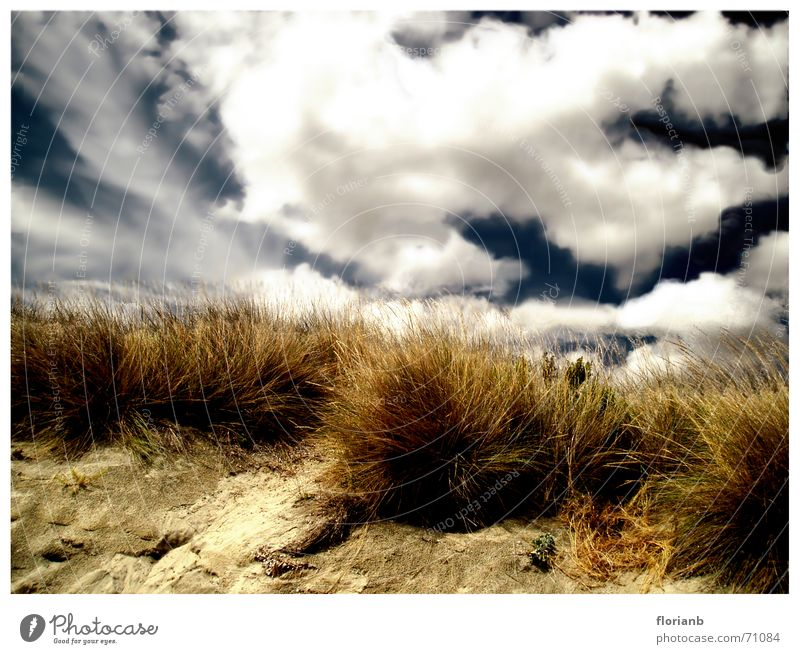 Greece's vastness Coast Clouds Grass Tuft of grass Yellow Brown Europe Vacation & Travel Processed Exterior shot Sky Blue Sand Landscape