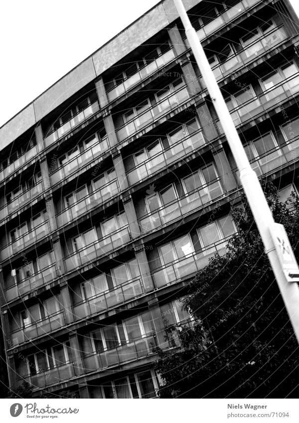 Nothing new in the East Flat (apartment) Concrete Poverty High-rise Prague Lantern Window Gray Bushes School trip House (Residential Structure)