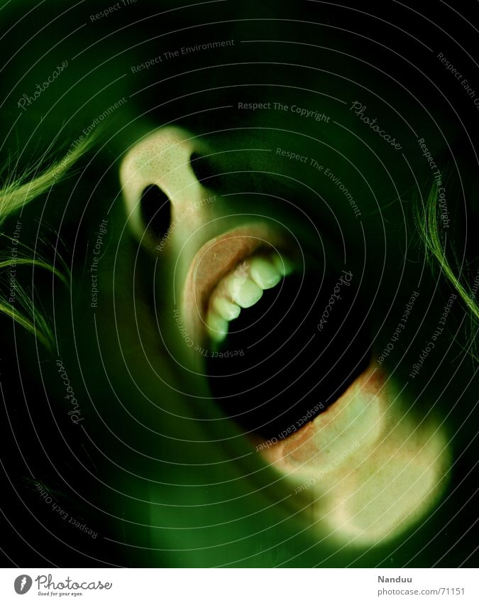 Green Emotions Death Mouth Fear Nose Crazy Grief Dangerous Teeth End Threat Scream Creepy Distress Panic