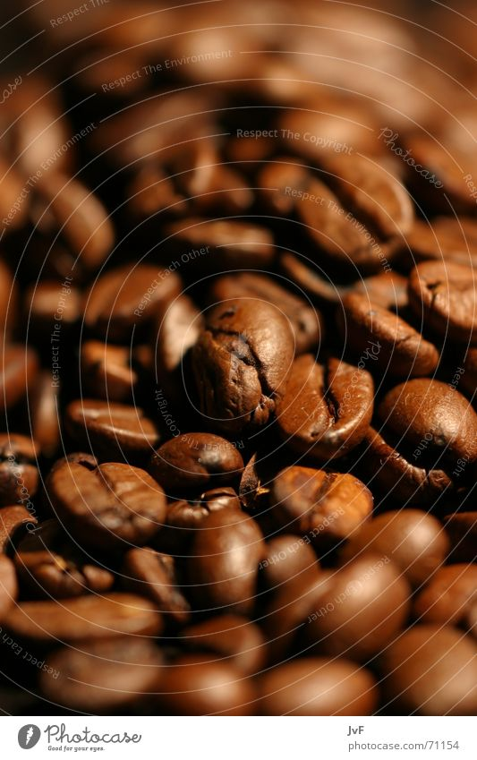 Do you smell the scent? Coffee bean Caffeine Café Brown Sense of taste Brunch Hot drink Beans Aromatic Fragrance Tea toast