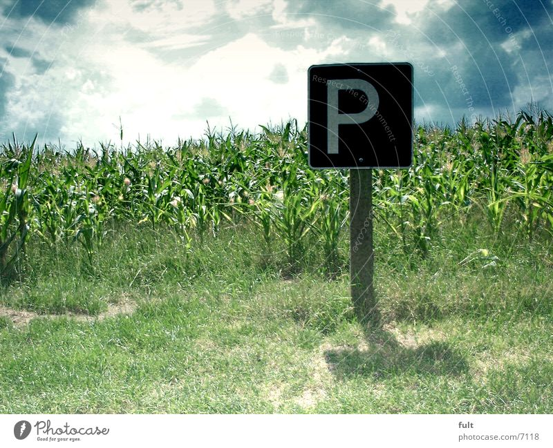 park Parking Horizon Signs and labeling Maize Sky Lawn