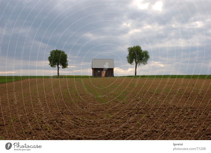 country Loneliness House (Residential Structure) Tree Field Dark Clouds Bad weather Americas Sky