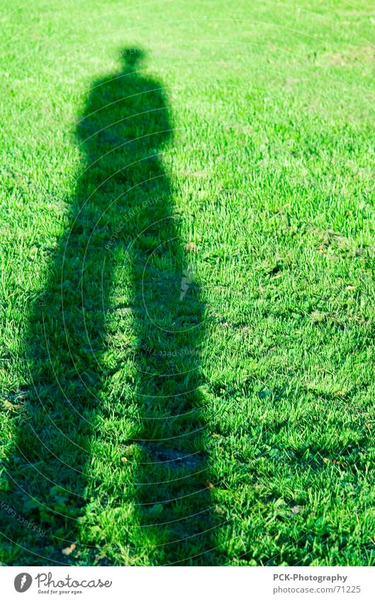 shadow man Green Meadow Man Long Direction Road marking Shadow stilt man Perspective