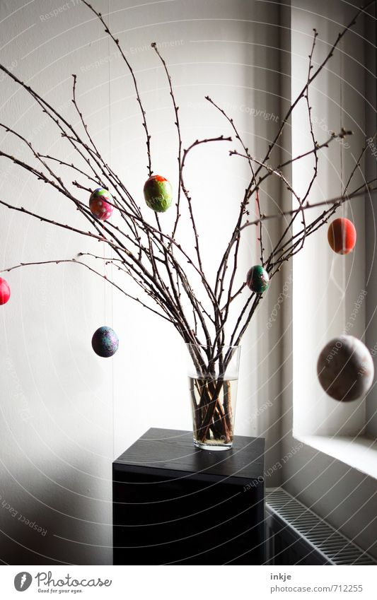 :-) Lifestyle Style Living or residing Decoration Easter Spring Branch Twigs and branches Window Vase Flower vase Hang Simple Beautiful Multicoloured Emotions