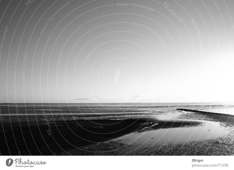 sand track Beach Low tide Sunset Calm Clouds Light Exterior shot Black & white photo North Sea Sand Far-off places