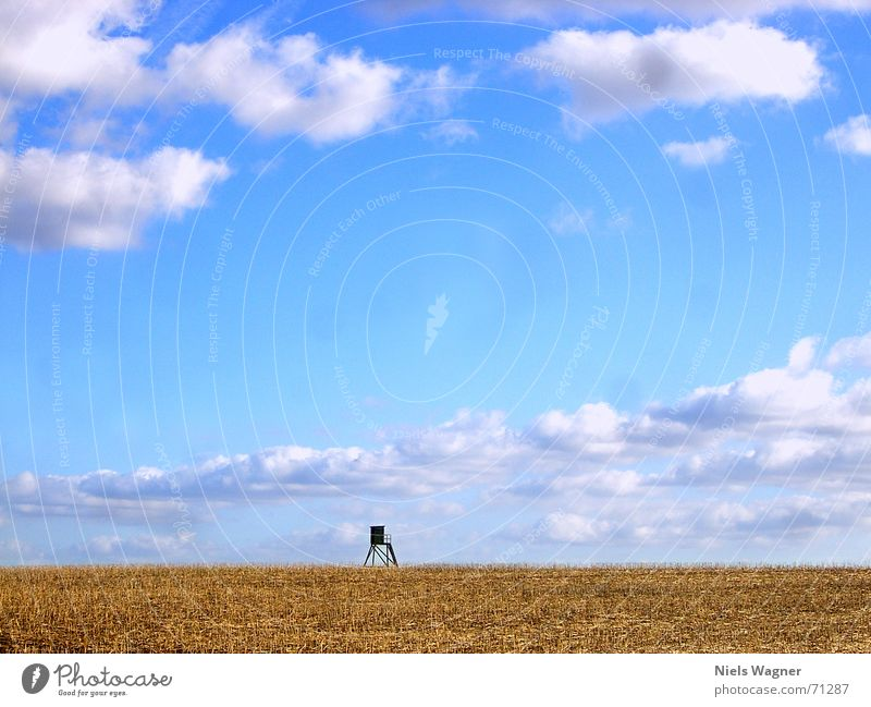 Blue Clouds Yellow Wood Field Vantage point Americas Hunting Blind Stopper Canola field