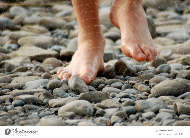 Step on stone Round Lake Barefoot Wet Exterior shot Going Toes Man Stone Minerals Feet Lake Constance Stride Movement Point