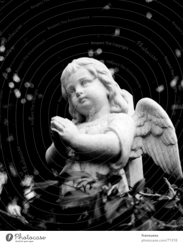 parted Cute Cemetery Grave Child Oberammergau Ivy Grief Funeral Angel Black & white photo Sadness