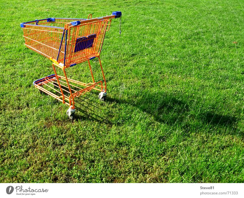 Nature Green Blue Meadow Grass Food Orange Leisure and hobbies Perspective Industrial Photography To go for a walk Trade Coil Supermarket Shopping Trolley Consumption