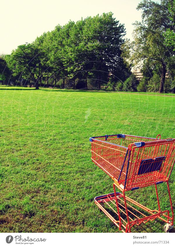 Nature Green Blue Meadow Grass Food Orange Leisure and hobbies Perspective Industrial Photography To go for a walk Trade Coil Supermarket Shopping Trolley