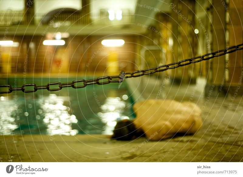 HALLE/S.-TOUR | Crime scene Fitness Swimming pool Back Bottom Stadtbad Halle Lie Dream Wait Cry Old Poverty Dark Eroticism Historic Cold Broken Muscular Naked